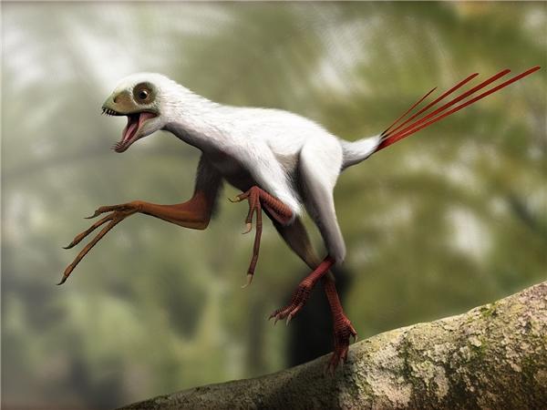 Hoảng hốt với những sinh vật có hình thù kì dị nhất thời tiền sử
