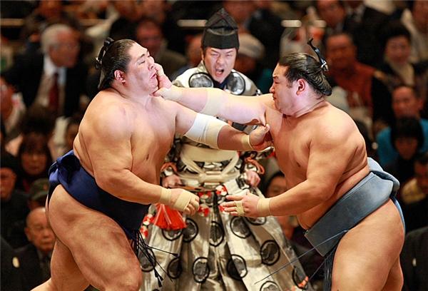 Các đô vật sumo cần một người thay họ vệ sinh cơ thể.