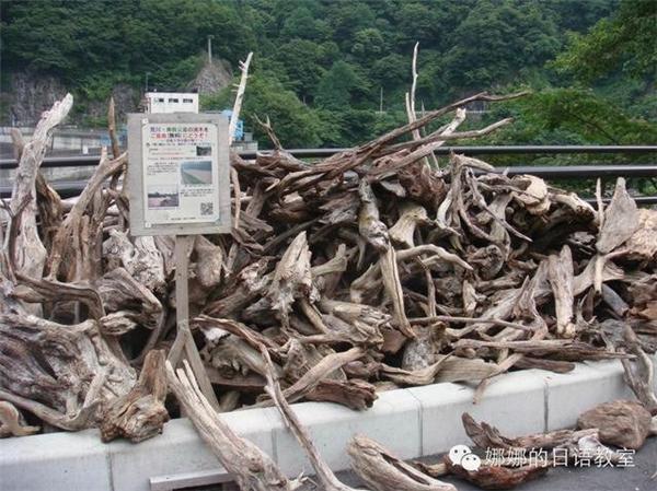 Những nhân viên chuyên nhặt gỗ có thể nhặt và bán lại cho các công ty tái chế gỗ.