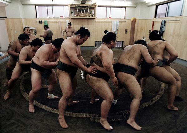 Thở không nổi với suất ăn khổng lồ của các võ sĩ Sumo Nhật
