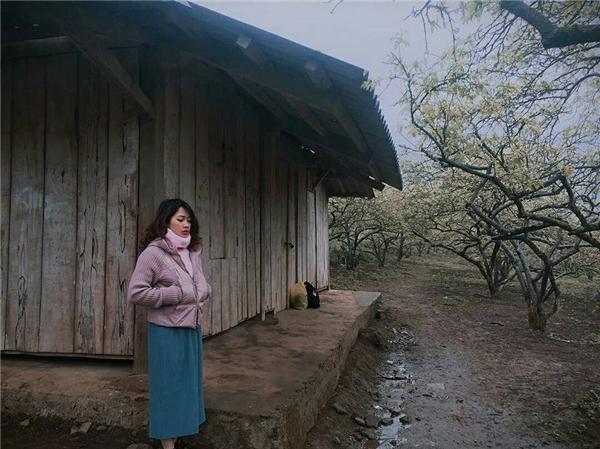 Những căn nhà gỗ đơn sơ bên hàng mận trắng xóa cũng là góc chụp hình lí tưởng dành cho các bạn trẻ đó nha. (Ảnh: kimchangchun)