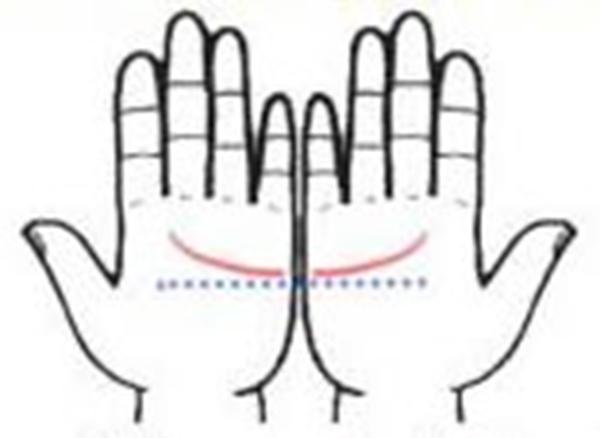 Chiều cao của đường chỉ tay ở hai bàn tay bằng nhau: Bạn là người thông minh và có tổ chức. (Ảnh: Internet)
