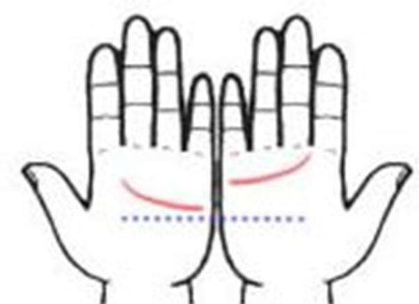 Những người có đường chỉ tay bên phải cao hơn thì thường là người khá chín chắn. (Ảnh: Internet)