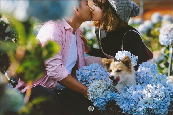 """Ảnh cưới ngày nay: đâu cần áo cưới, """"tình"""" và """"thơ"""" thế này là đủ rồi!"""