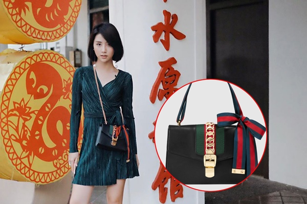 Quỳnh Anh Shyn có vẻ ưa chuộng những chiếc túi có kích thước nhỏ xinh. Đây là thiết kế mang tên Sylvie có giá khoảng 40 triệu đồng. Phụ kiện hòa hợp với trang phục bởi tông màu trầm làm chủ đạo.