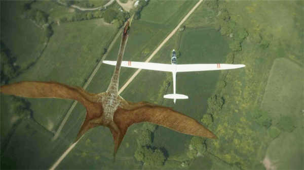 Chúng có kích thước sải cánh giống như một chiếc máy bay. (Ảnh: Internet)