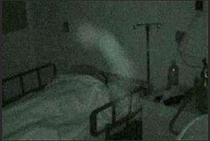 Khi màn đêm buông xuống, bệnh viện trở thành nơi sống động hơn bao giờ hết. Nhưng không phải do hoạt động của con người...