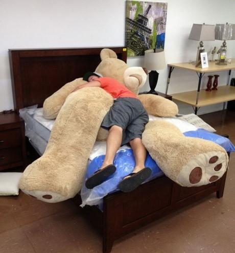 Ai bảo anh đây không có gấu nào.